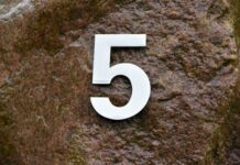 Five on Friday Oct 8 2021